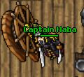 Captain Haba.png